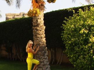 Verführerisch in gelb Satin Hose